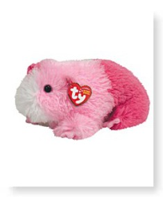 Buy Now Pinky Guinea Pig